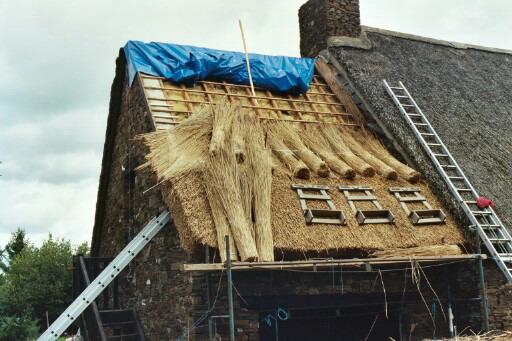 inconvénients des toits en chaume