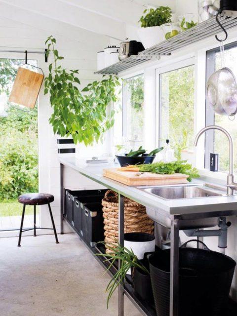plante dans la cuisine