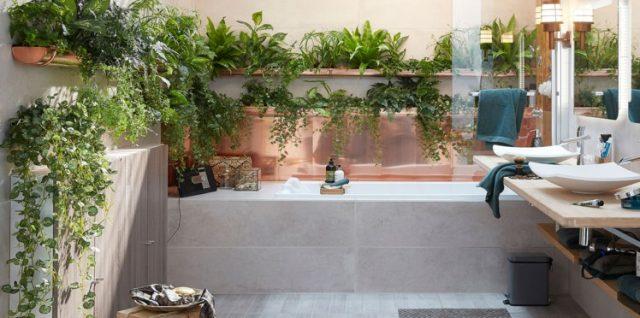 plantes dans la salle de bain