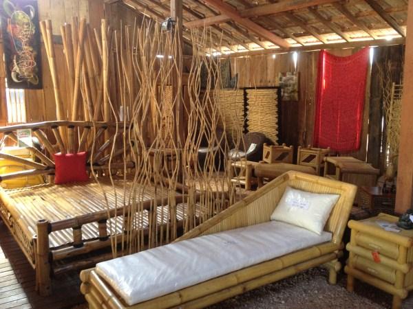 Les utilisations possibles du bambou